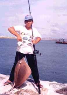 12kg-long-tail-stingray
