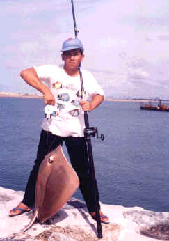 12kg-long-tail-stingray