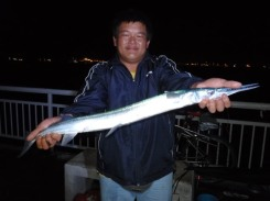 2kggarfish