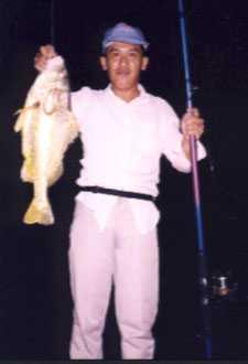 3-5kg-golden-snapper