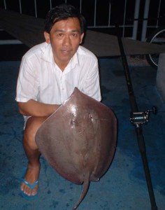 Brown Ray