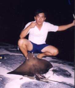 5kg-eagle-ray