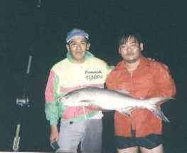 ah-fat-threadfin