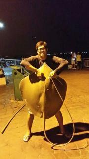 ahbee26kg