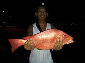 ahboi25kg