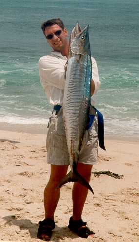 Big Mackeral from the shore of Australia