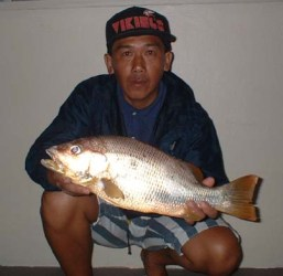big-fingermark-snapper-on-light-surf-tackle