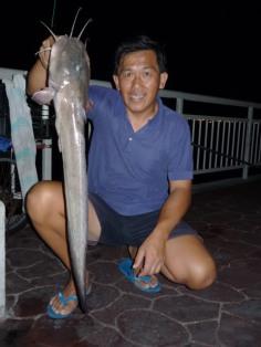Big mouth eel