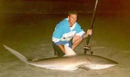 Bronze Shark caught from the beach
