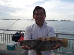 grouper_zps379ee54b