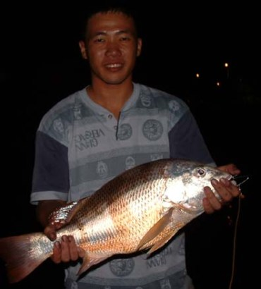 Ron with his record 3.9 kg Fingermark Snapper