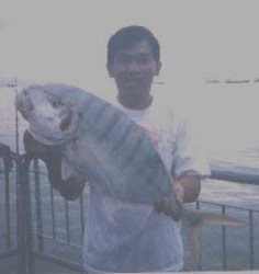 5 kg Golden Travelly at bedok jetty